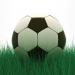 Football-Conférence : « L'arrivée et l'épanouissement des joueurs africains en Europe »