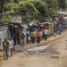 RDC : énormes concessions forestières attribuées à des opérateurs chinois