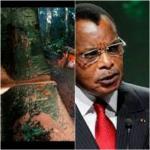 Congo-B : La chargée de mission de l'ambassade de France au Congo, Gabrielle Cathala, dézingue « l'ocologisme de façade » de Sassou-Nguesso